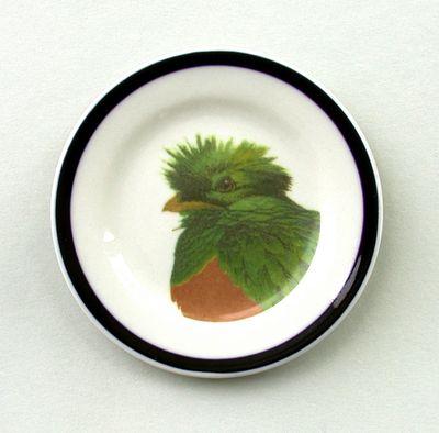 8-quetzal1