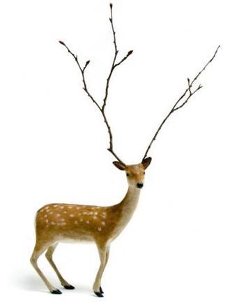 Deerstick
