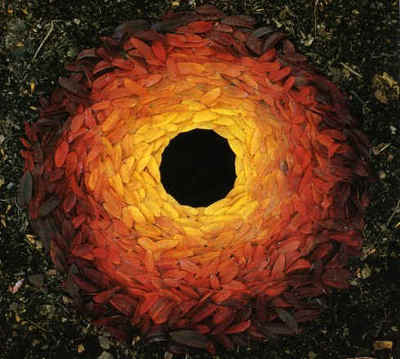 Andy_goldsworthy_rowan_leaves_with_