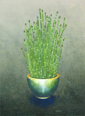 James_waterman_equisetum_in_bronze_