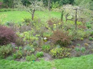 April_15_garden