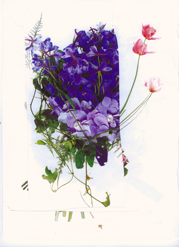Butler_flower3