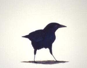 E05_birdstudy5_1