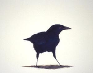 E05_birdstudy5_1_1
