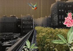 Highline02