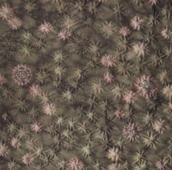 Kimono_detail