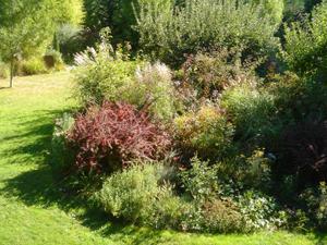 Sept_garden