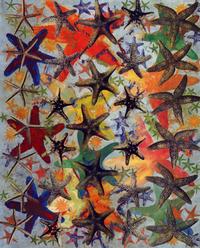 Starfish_phillip_taaffe